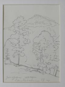 Jungfrau Wengen - Lauterbrunnen